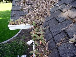 Offer gutters - install or replace services