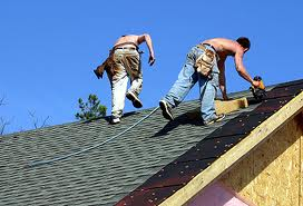 Offer metal roofing - paint services