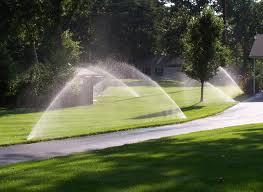 Offer sprinklers services
