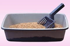 Offer litter box cleaner services