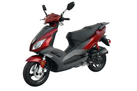 Offer moped rental services