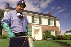Offer pest control services
